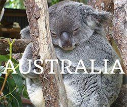 Search Australia