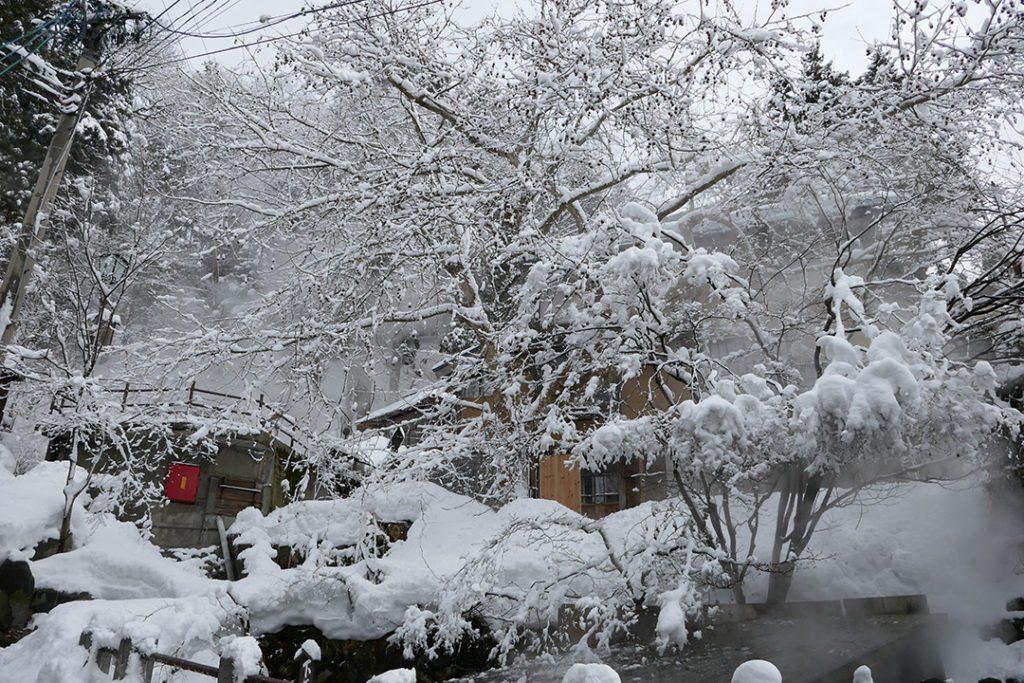 Visit Nozawa Onsen