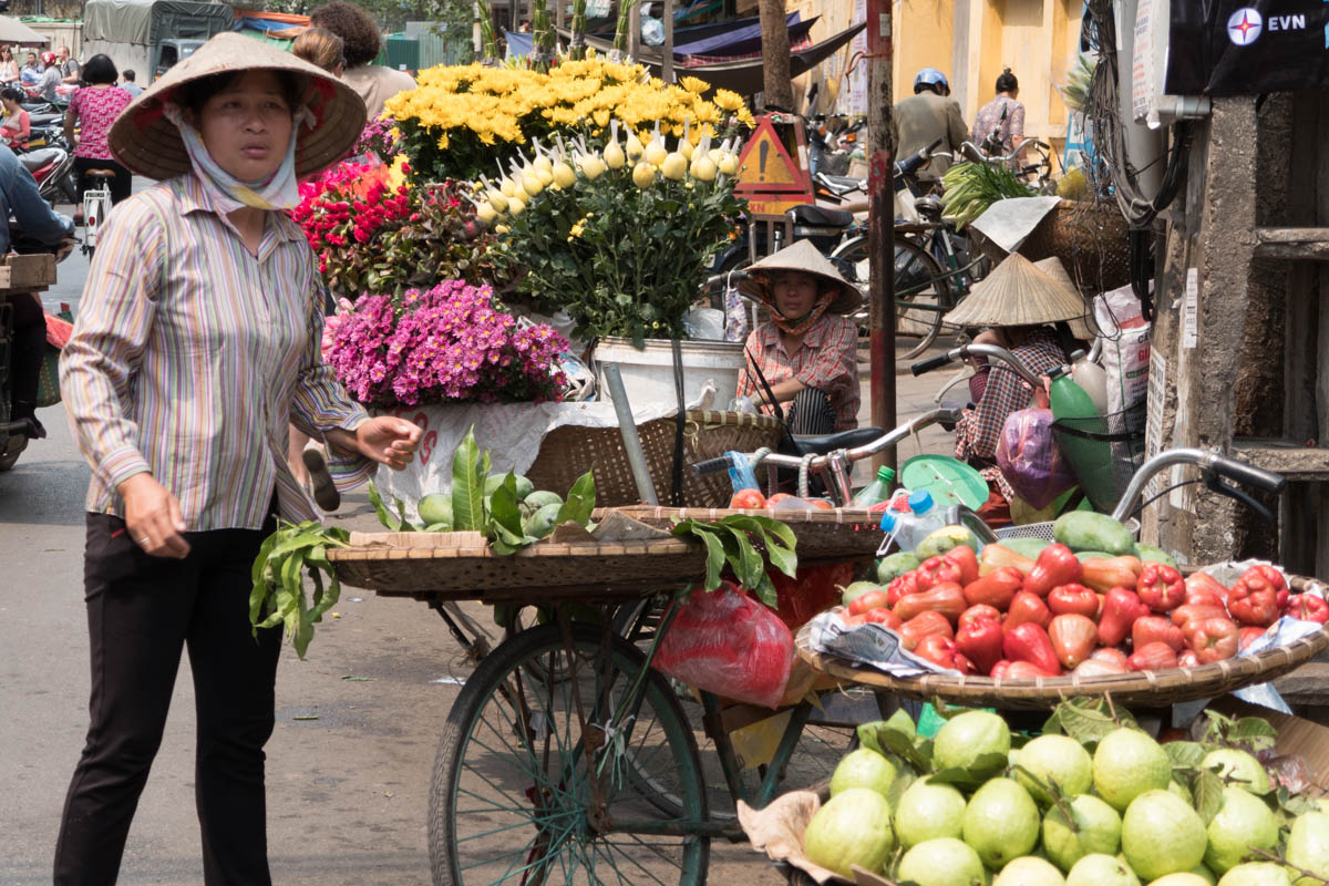 Exploring the Old Quarter of Hanoi