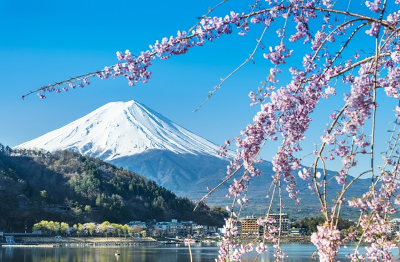 Flights to Tokyo from $540 return. Checked baggage and meals included!