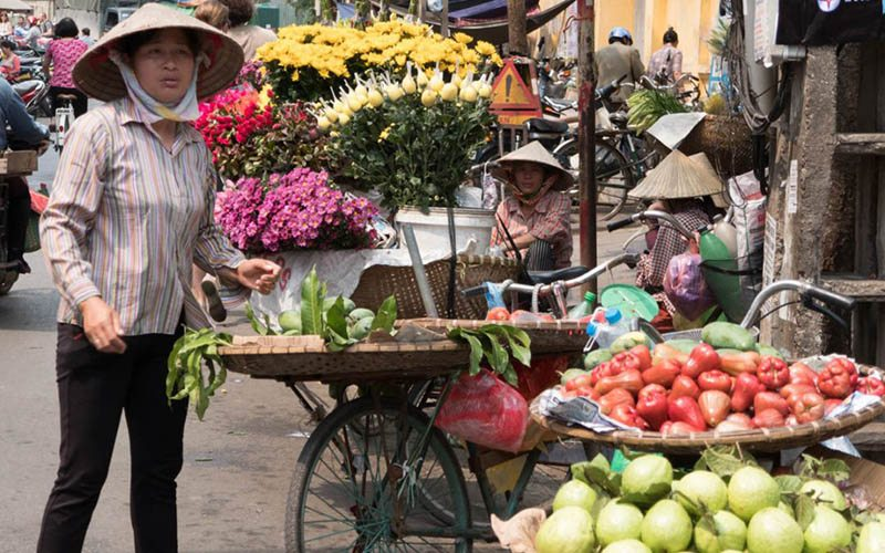 Top 5 Day Trips from Hanoi